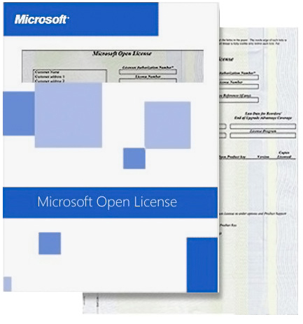 Microsoft System Center Endpoint Protection Monthly Subscriptions OLV 1 License NoLevel Additional Product PerUsr 1 Month (M3J-00081)