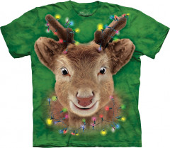 Футболка The Mountain Lights Reindeer junior L Зеленый (108509)
