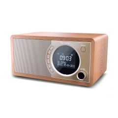 SHARP Digital Radio Brown (DR-450(BR))