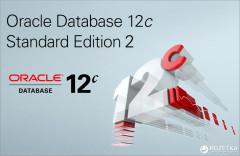 Oracle Database Standard Edition 2, NUP, Perpetual 1-Click с поддержкой на 1 год (L104650LS)