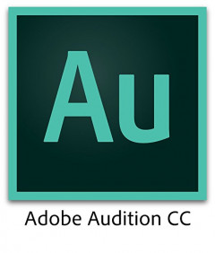 Adobe Audition CC Multiple Platforms Multi European Languages License New 1 лицензия 1 ПК на 1 год (65270329BA01A12)