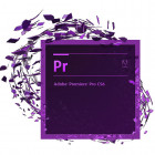 Adobe Premiere Pro CC Multiple Platforms Multi European Languages License New 1 лицензия 1 ПК на 1 год (65297627BA01A12) - изображение 1