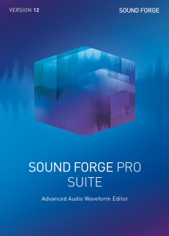 MAGIX Sound Forge Pro 12 Suite ESD при заказе от 5 до 99 шт (электронная лицензия) (ANR008259ESDL1)