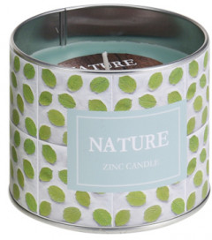 Свеча Home&Styling Collection Nature 9.5x8 см (CC5053120_mint)