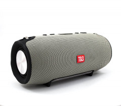 T&G Extreme Bluetooth Speaker Grey (PBS-000068)